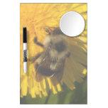 Dandelion Pollenator Dry-Erase Whiteboard