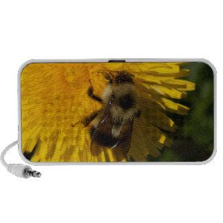 Dandelion Pollenator Speaker System
