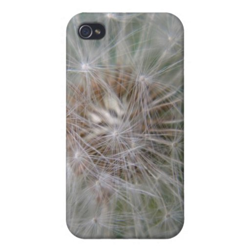dandelion puff iPhone 4 covers