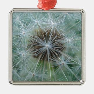Dandelion sample ornament