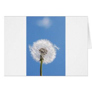 Dandelion seed card