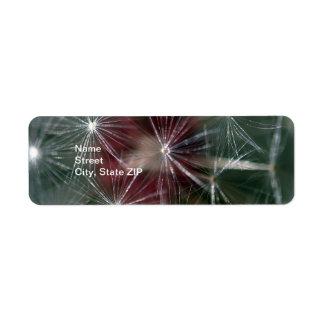 Dandelion Seed Head Label