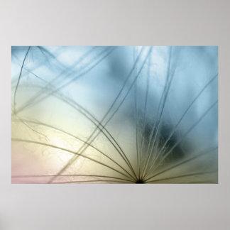 Dandelion seed macrophotography print