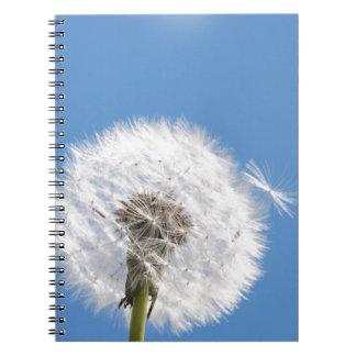 Dandelion seed notebook