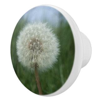 Dandelion Seedhead Dresser Knob Ceramic Knob