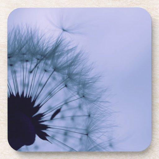 Dandelion Seeds Coaster