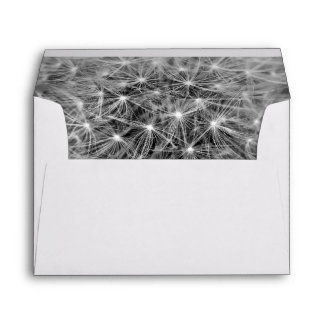 Dandelion Seeds Envelope