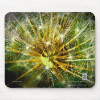 Dandelion Seeds Mouse Pad