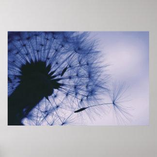 Dandelion Seeds Posters