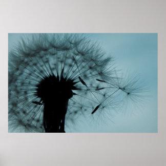 Dandelion Seeds Teal and Black Print