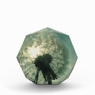 Dandelion Sparkles Acrylic Award