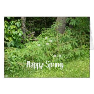 Dandelion Spring Greeting Joke Card