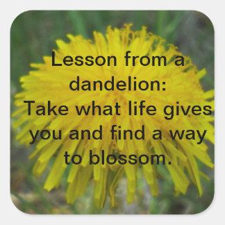 Dandelion Square Sticker