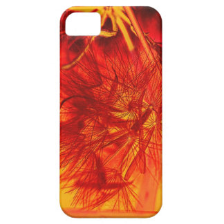 Dandelion Sunset Gifts iPhone SE/5/5s Case