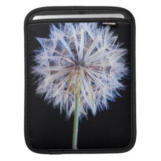 Dandelion (Taraxacum Officinale) Seed Head iPad Sleeve