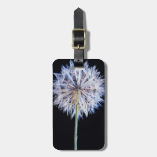 Dandelion (Taraxacum Officinale) Seed Head Luggage Tag