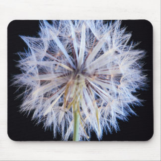 Dandelion (Taraxacum Officinale) Seed Head Mousepads