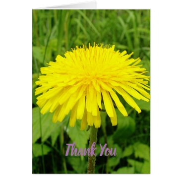 Dandelion Thank You Greeting Card