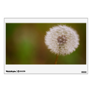 Dandelion Wall Skins