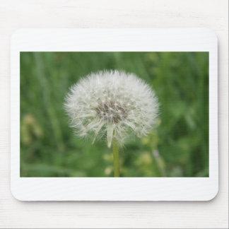 dandelion white mouse pad