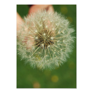 Dandelion Wishes Card