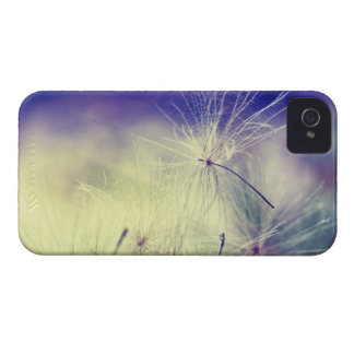 Dandelion Wishes iPhone 4 Cases
