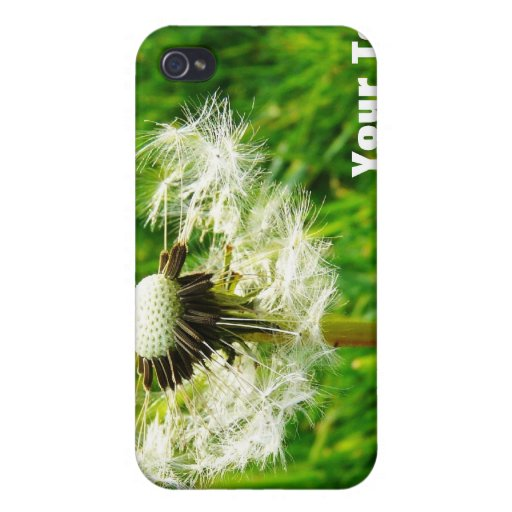 Dandelion Wishes - I wished for.... iPhone 4/4S Cases