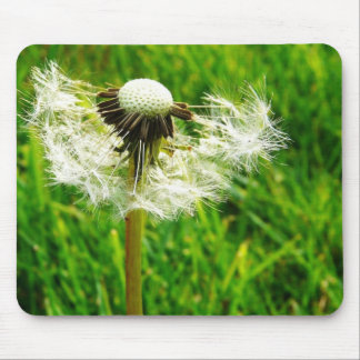 Dandelion Wishes - I wished for.... Mouse Pad