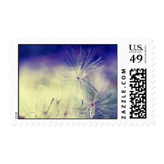 Dandelion Wishes Postage Stamp