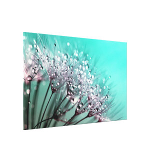 Dandelion With Water Droplets Fine Art Photography Canvas Print