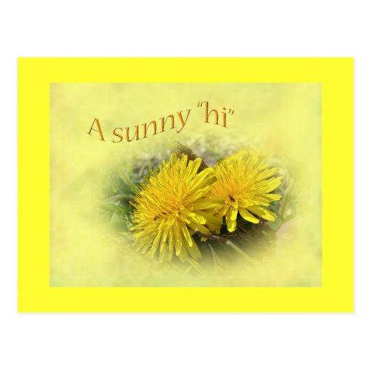 Dandelions - A Sunny Hi Postcard