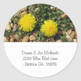 Dandelions Address Stickers
