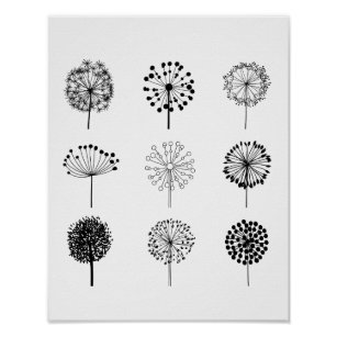 Black And White Botanical Art Wall Décor Zazzle