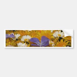dandelions etc bumper stickers