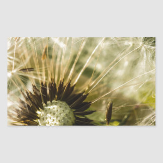 Dandelions For All Rectangular Sticker