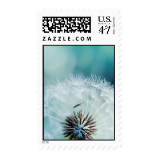 Dandelions heart postage