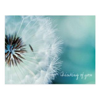 Dandelions heart postcards