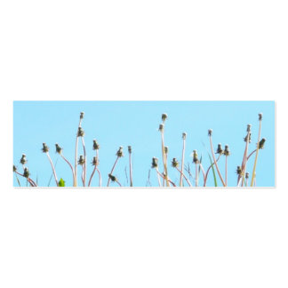 Dandelions in the sun bookmark business cards