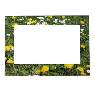 Dandelions Magnetic Picture Frame