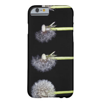 Dandelions release seeds on wind currents to barely there iPhone 6 case
