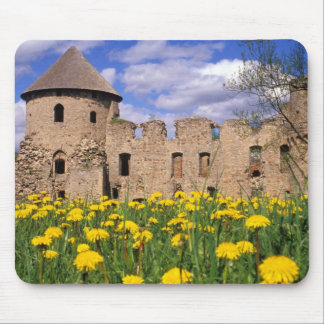 Dandelions surround Cesis Castle in central Mouse Pad