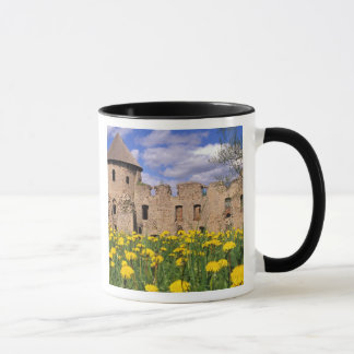 Dandelions surround Cesis Castle in central Mug