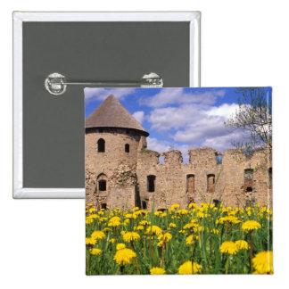 Dandelions surround Cesis Castle in central Pinback Button