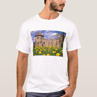 Dandelions surround Cesis Castle in central T-Shirt