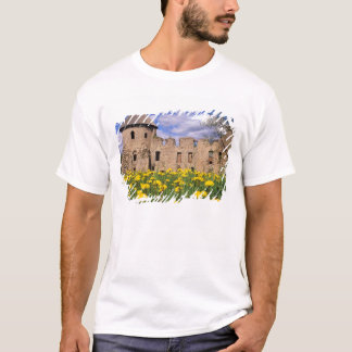 Dandelions surround Cesis Castle in central T-Shirt