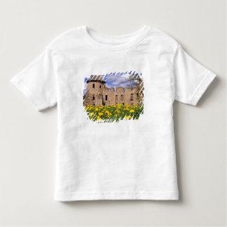 Dandelions surround Cesis Castle in central Toddler T-shirt