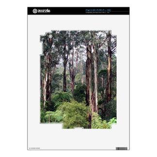 Dandenong Ranges Rainforest, Australia Decal For The iPad 2