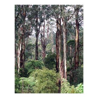 Dandenong Ranges Rainforest, Australia Letterhead