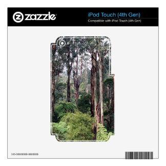 Dandenong Ranges Rainforest, Australia Skins For iPod Touch 4G