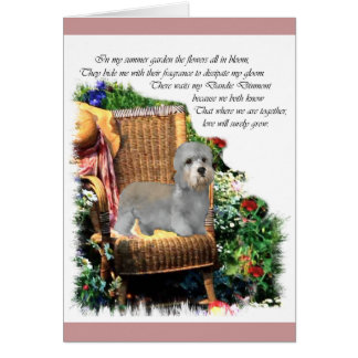 Dandie Dinmont Terrier Art Gifts Card